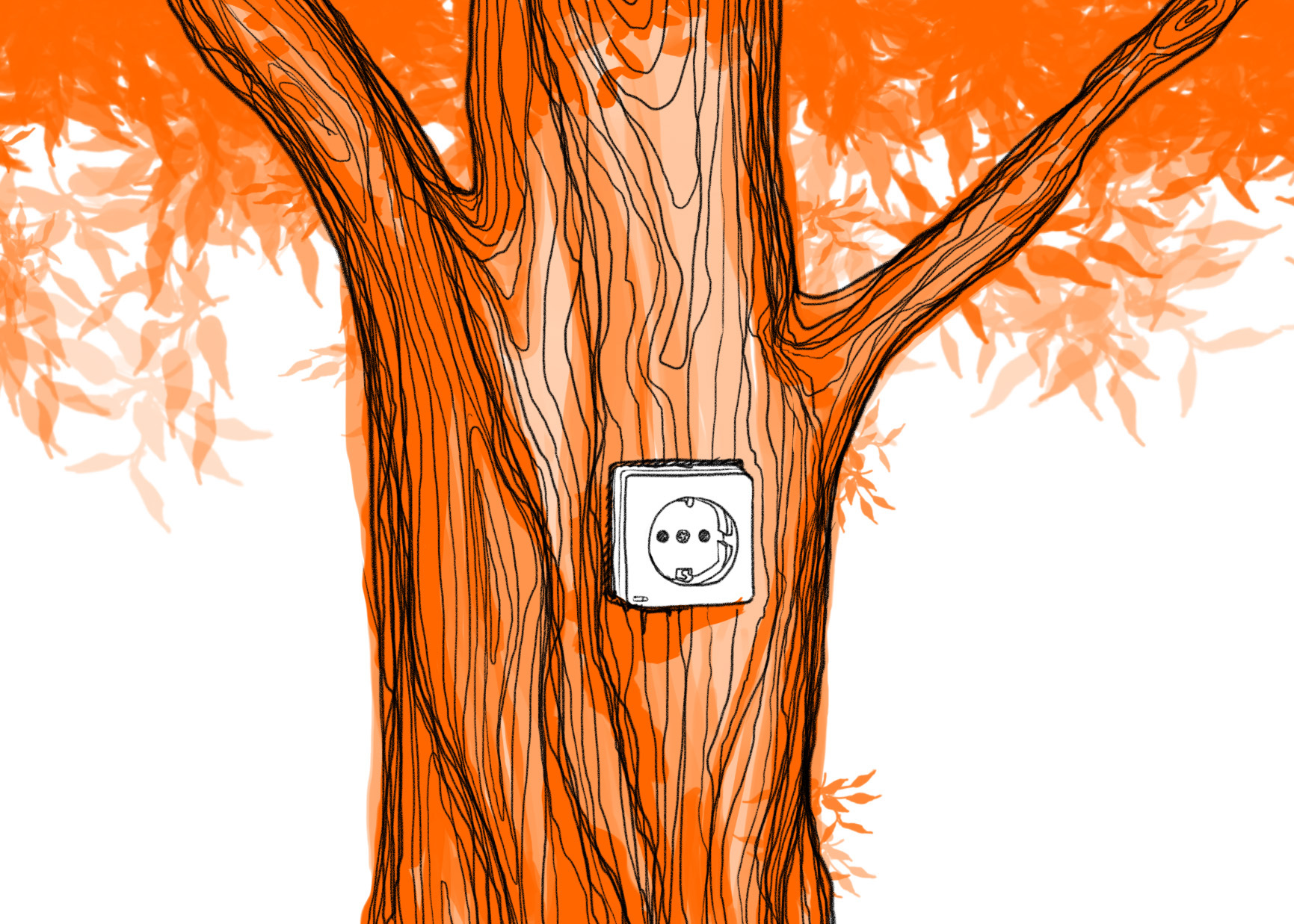 Baum mit Steckdose